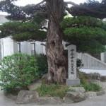 山口の中原中也記念館